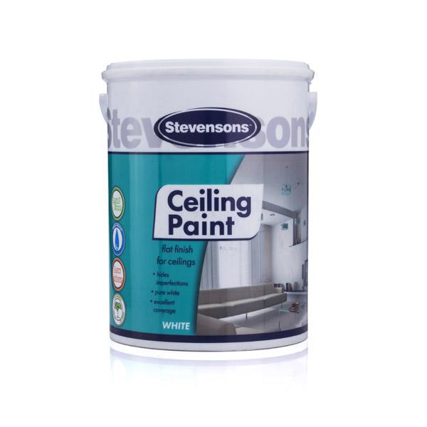Stevensons Architect Ceiling Paint